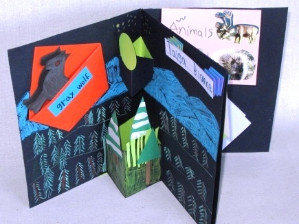 Biome Book by elementary student