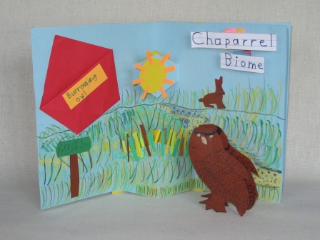 Chaparrel Bione Book by a Second Grader