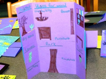 Flexagon showing uses of wood