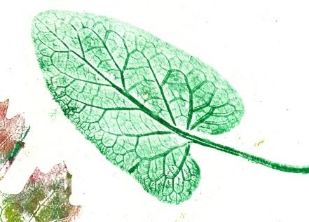 Burdock Leaf