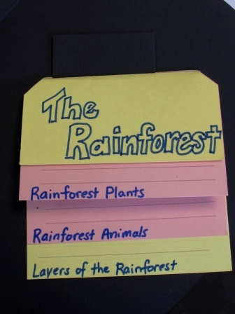Mrs. Pipino's Rainforest info sample book