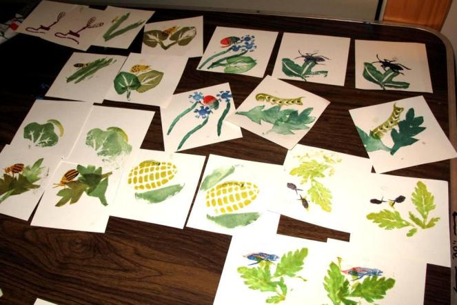 Images printed for The Pesky Bug Book
