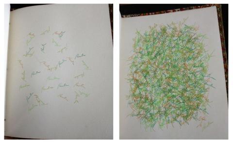 two-pics