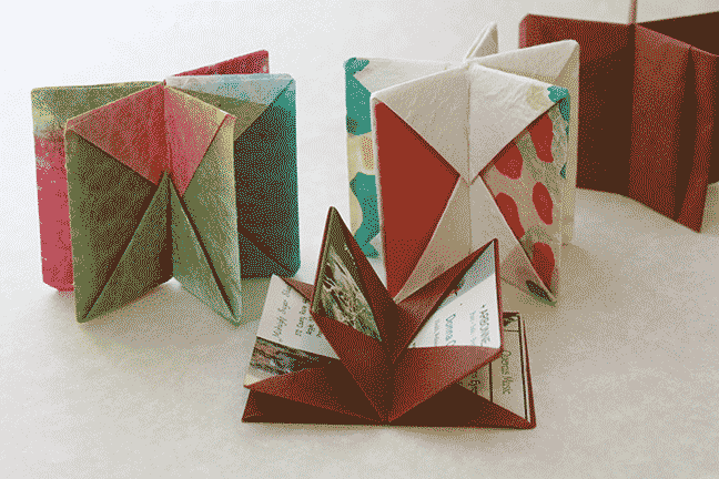 Card Carrying Blizzard Book, a book structure designed by Hedi Kyle