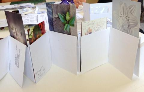 Envelope Number LIne Book used for Pictures