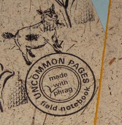 Close up Phrag book