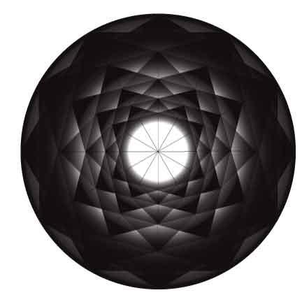 12 fold rosette in blacks