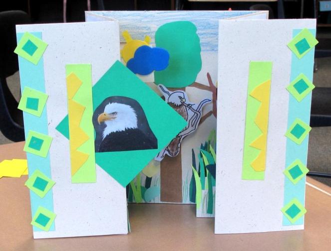 Adirondack Birds Katelyn's Eagle 2
